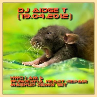 Hwo I am & Wunderful Heart Repair Mashup Remix Set @DJAidgeT (19.04.2012) by djaidget
