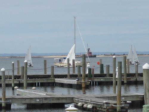 Sailboat Race in Port Jeff
