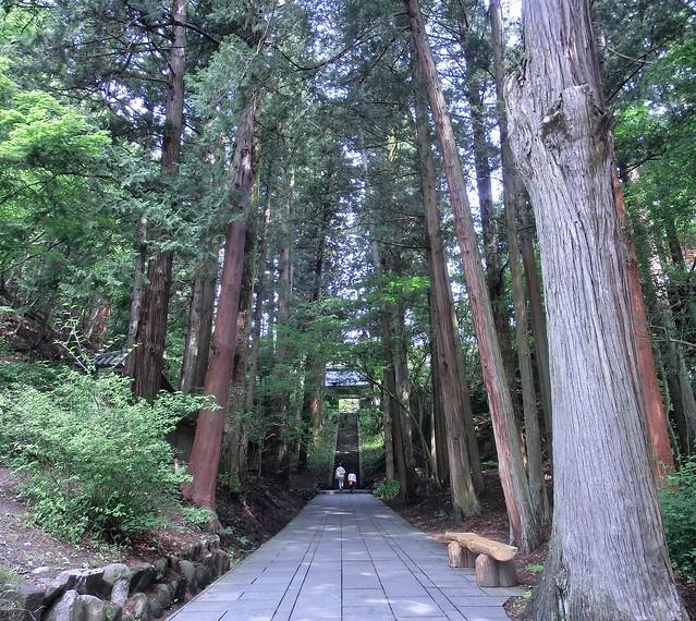 長野 別所温泉 観光(安楽寺)