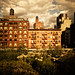 Deluge of Light - The Chelsea Skyline as seen from the High Line - New York City by Vivienne Gucwa
