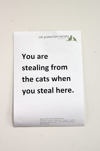 Stealing from the cats