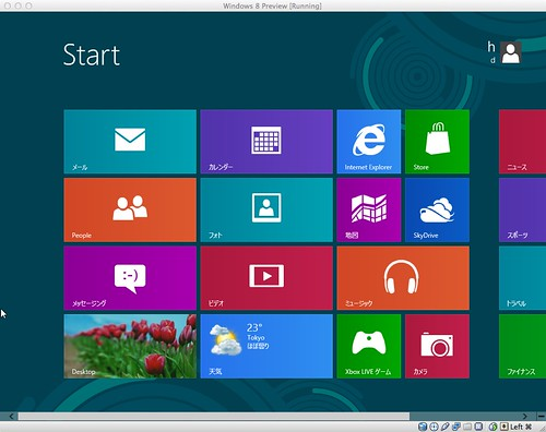 Windows 8 Release Preview on VirtualBox / Mac