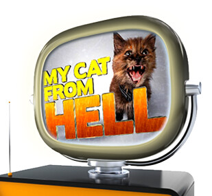 my_cat_from_hell_banner_005