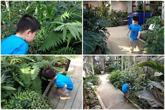 渋谷区ふれあい植物センター(2012/5/19)