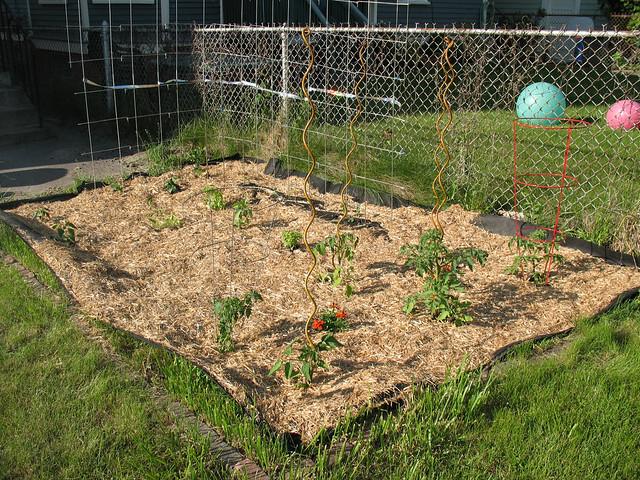 Garden, 2012