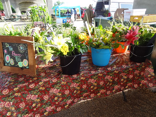 Farmers Market May 19, 2012 (12)
