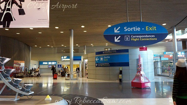 Paris - CDG Airport  (32)