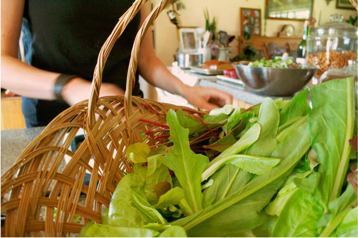 {fresh garden} salad