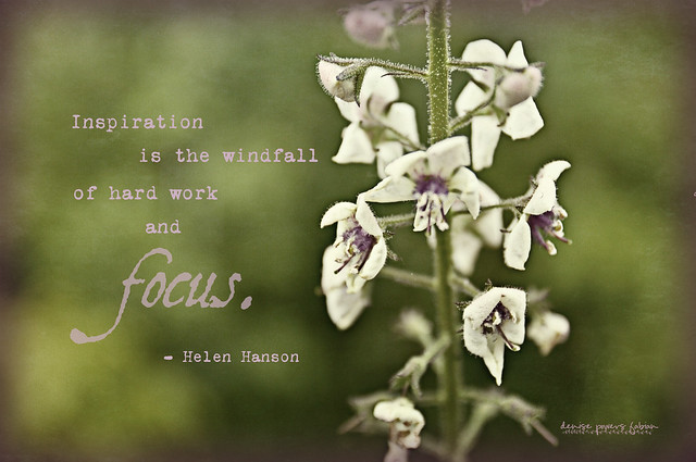 Inspired Focus or Focused Inspiration