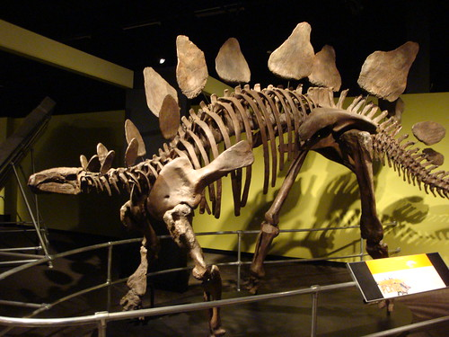 June 2 2012 - Royal BC Museum