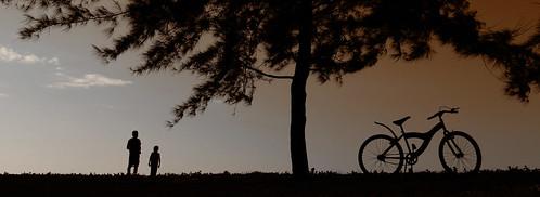 無料写真素材, 人物, 自転車, シルエット, 人物  樹木