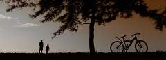 [Free Images] People, Bicycles, Silhouette, People - Trees ID:201206091200