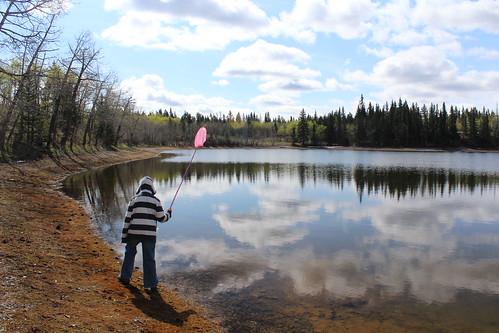 Sibbald Lake 024