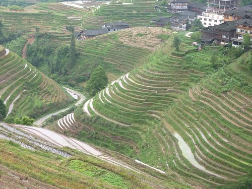 C-Guangxi-Pingan-Terrasse des 9 dragons (13)