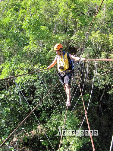 Catigbian Hanging and Monkey bridge