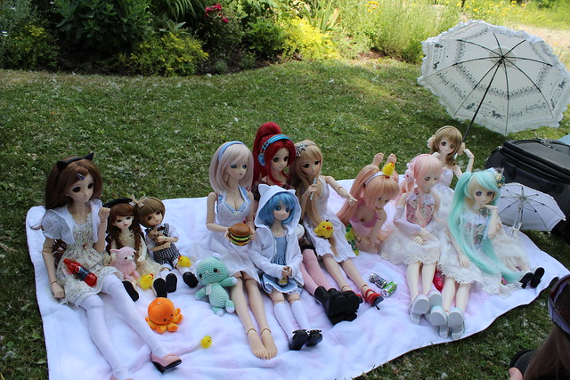 DD picnic on Ward Island