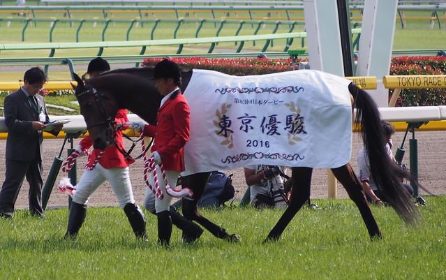Derby Winner Makahiki