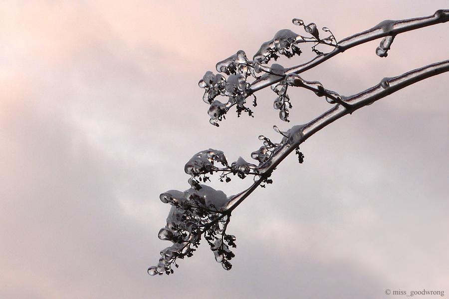 Winter 34
