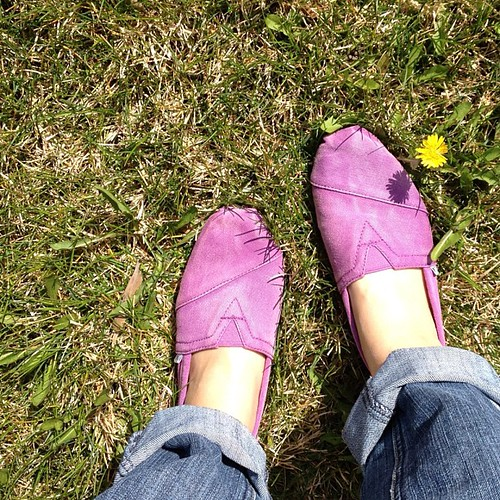 Purple Toms! I already love them. #toms