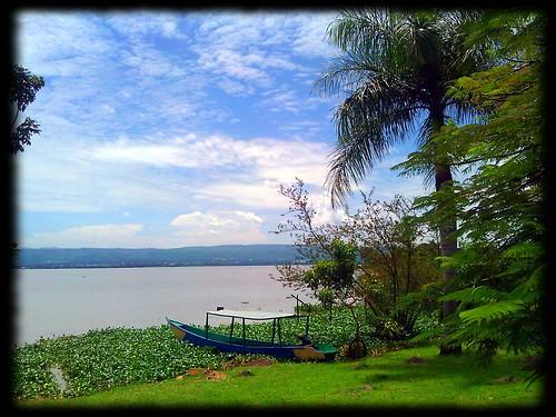 africa boat kenya hyacinth lakevictoria kisumu kibokobayresort