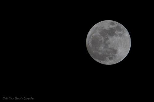 Luna de Mayo