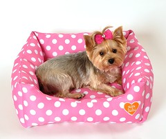 Signature LuLu Pink Dot Bed