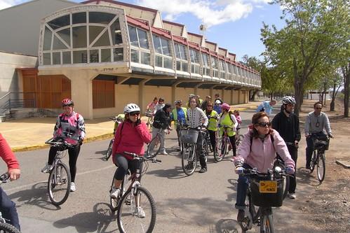 Bicicletas en el Campus de Rabanales.
