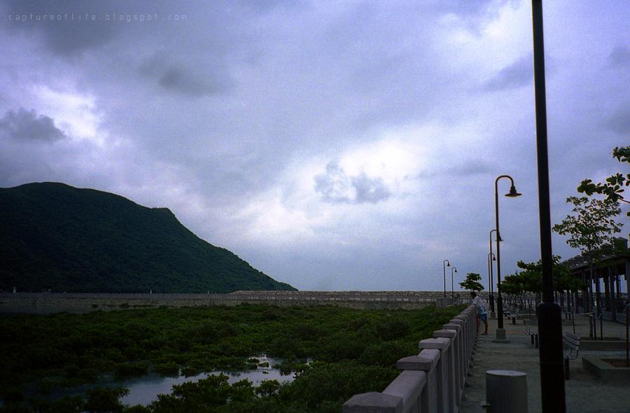 2012_0526_115040az_Portra400_YashicaT3