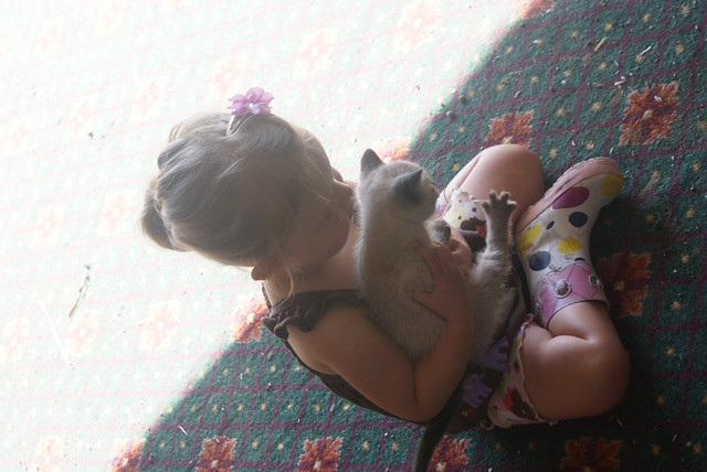 "Lilah snuggling ""smokey"" the farm kitty :-)"