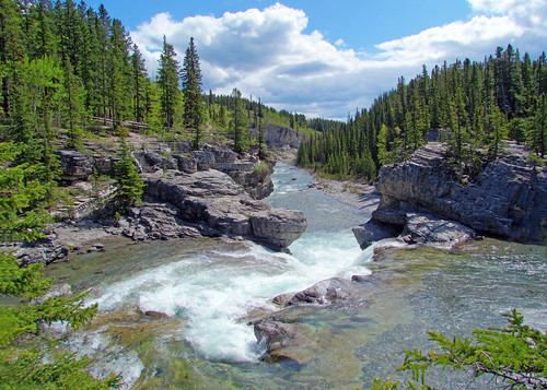 Majestic Elbow Falls