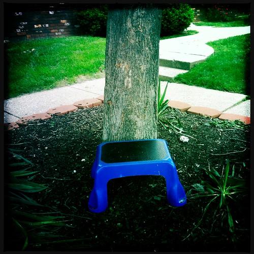 Blue Step Stool
