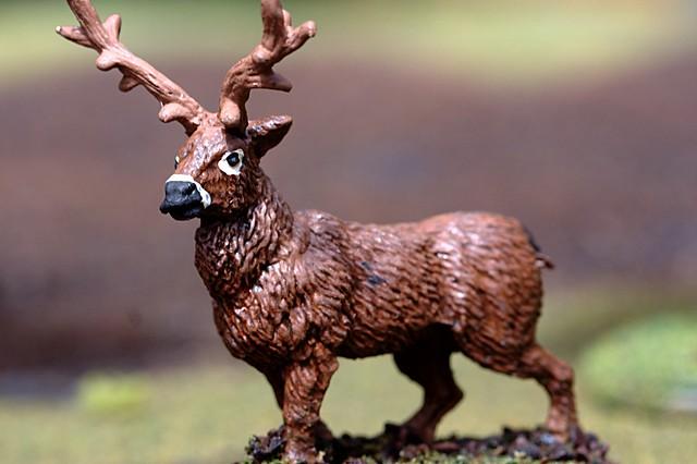 Buck detail