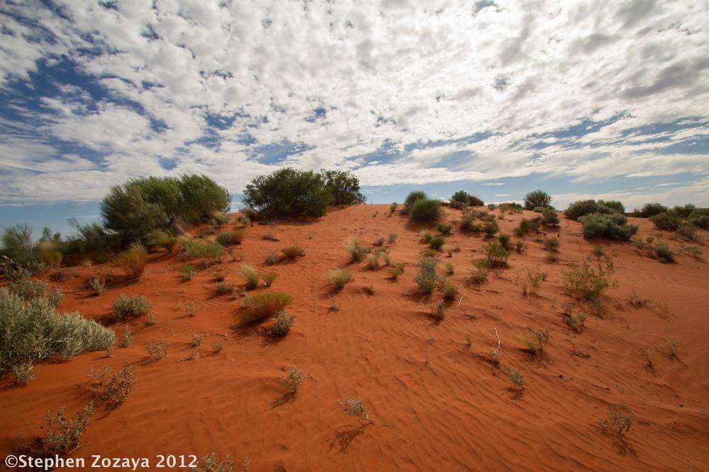 Great Sandy Desert World Map.Sand Dune Great Sandy Desert A Sand Dune Habitat For Ne Flickr
