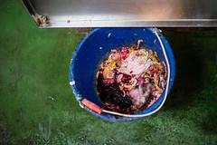 meat waste
