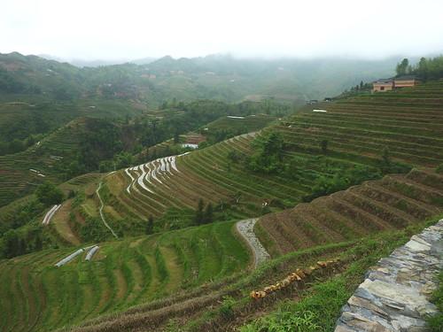 C-Guangxi-Dazhai-montee (10)