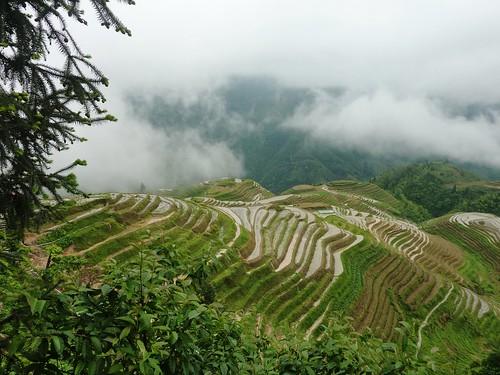 C-Guangxi-Pingan-Terrasse des 7 etoiles (49)
