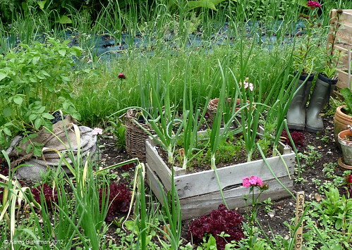 When You Think About Self Sufficiency, You Should Think About Containers