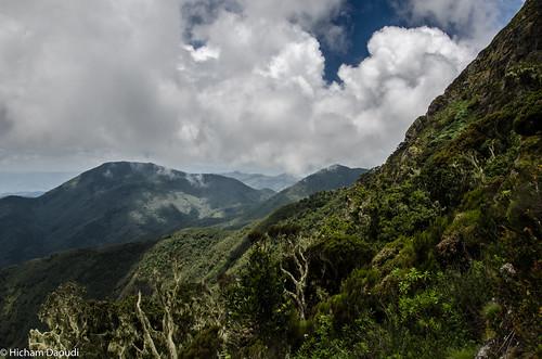 nationalpark congo iccn bukavu democraticrepublicofthecongo northkivu southkivu kahuzibiega
