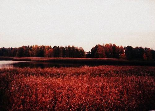 trip nature finland landscape marielito