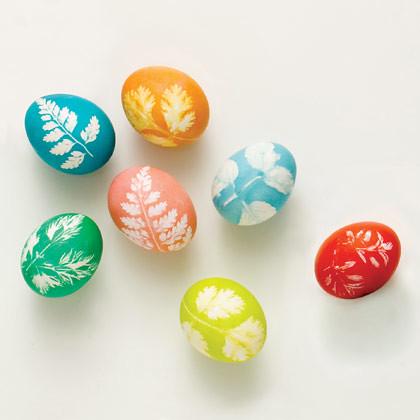 leaf eggs