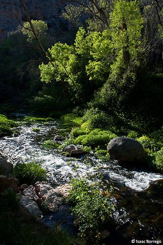 fossilcreek arizona water unitedstates america