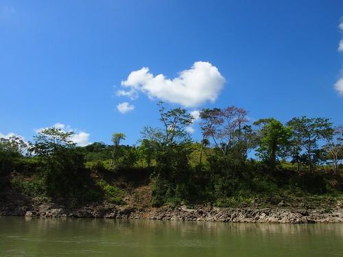 Flores - Tikal-43