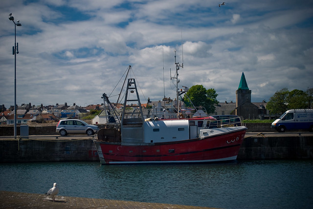020612_ in Anstruther no4