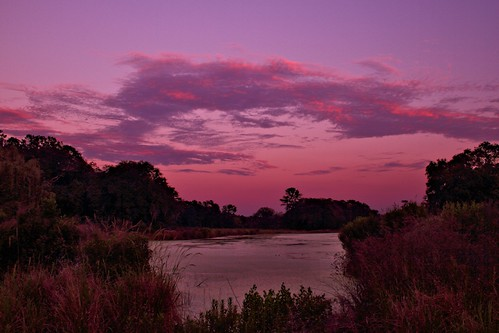 pink sunset color clouds reeds pond exposure purple vibrant paintshoppro mdggraphix pspx4