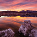 Reflections of Mono Lake by Jim Patterson Photography