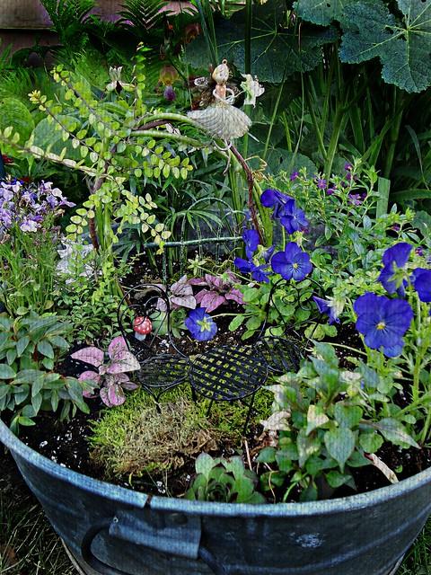 fairy garden 3