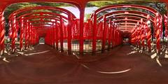 Red gates