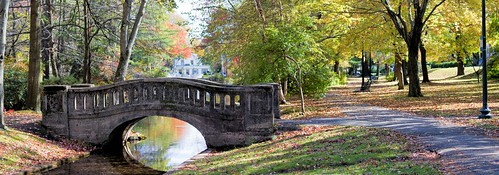 park bridge trees reflection fall water landscape footbridge westfield panarama walkingbridge