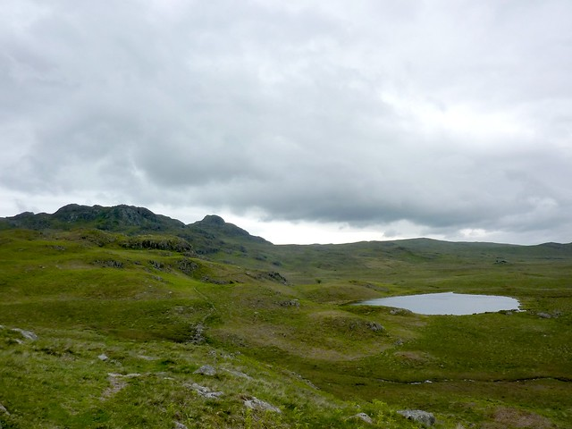 Green Crag and Lower Birker Tarrn