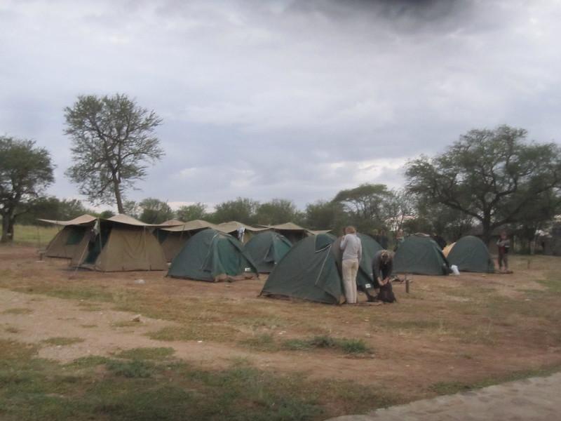 Camping Serengeti Africa